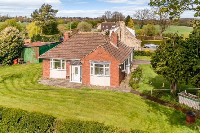 Thumbnail Detached bungalow for sale in Church Lane, Stutton, Tadcaster