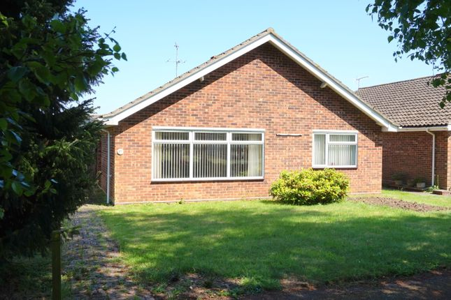 Thumbnail Detached bungalow for sale in Silver Leys, Bentley, Ipswich