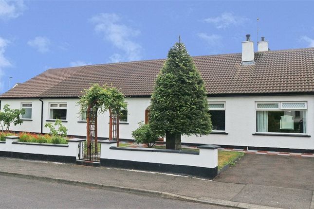 Thumbnail Detached bungalow for sale in Wattstown Crescent, Coleraine, County Londonderry