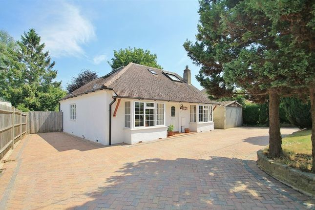 Thumbnail Detached house for sale in Tuckey Grove, Ripley, Woking
