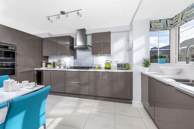 "Thumbnail Semi-detached house for sale in ""Hythe"" at Chapel Hill, Basingstoke"