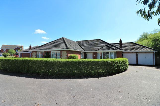 Thumbnail Detached bungalow for sale in Paget Adams Drive, Dereham