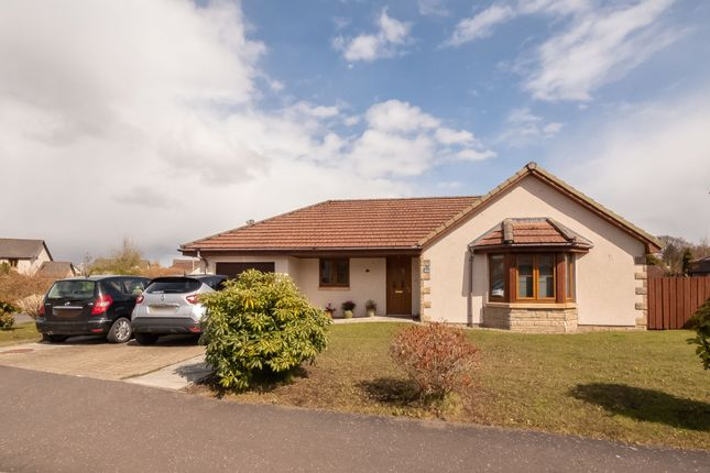 Thumbnail Bungalow for sale in Maple Place, Blairgowrie, Perthshire