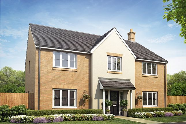 Thumbnail Detached house for sale in Sandpit Lane, Thorney
