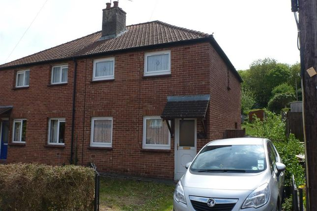 Thumbnail Property to rent in Broadlands Avenue, Newton Abbot