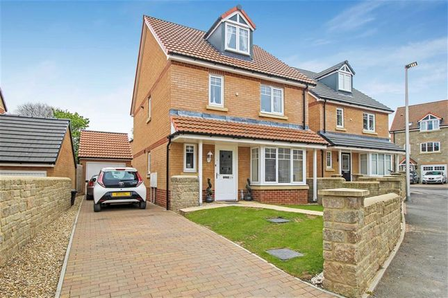Thumbnail Detached house for sale in York Rise, Bideford