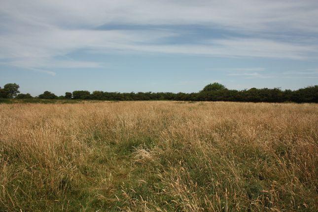 Thumbnail Farm for sale in Twentypence Road, Cottenham, Cambridge
