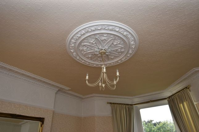 Ceiling Rose of Greenbank Avenue, Lipson, Plymouth PL4