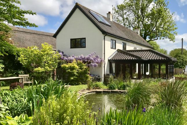 Thumbnail Detached house for sale in Church Road, Lingwood, Norwich