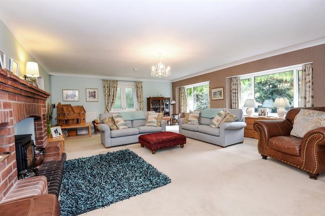 Thumbnail Detached house for sale in Lock Lane, Holme-On-Spalding-Moor, York