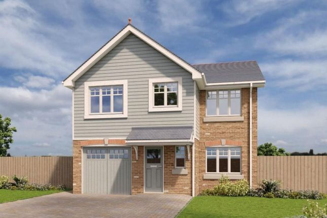 Thumbnail Detached house to rent in Mooragh Promenade, Ramsey, Isle Of Man