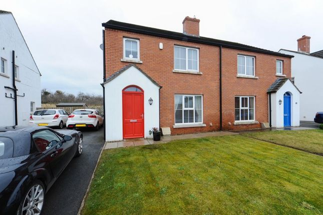 Thumbnail Semi-detached house for sale in Forge Drive, Ballygowan