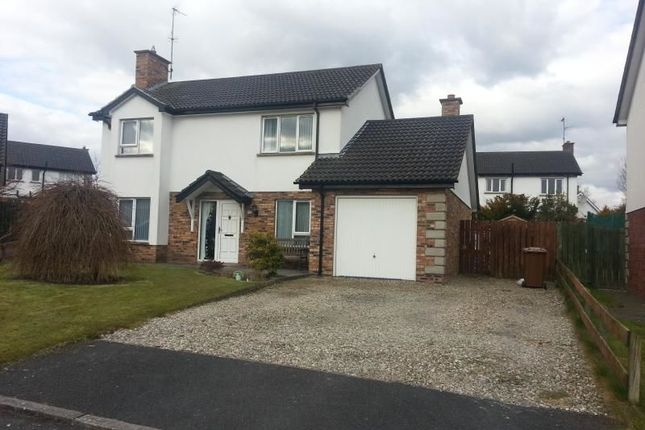 Thumbnail Detached house to rent in Weavers Lodge, Donaghcloney, Craigavon