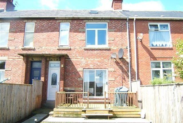 Thumbnail Terraced house for sale in Arthur Terrace, Whitburn, Sunderland