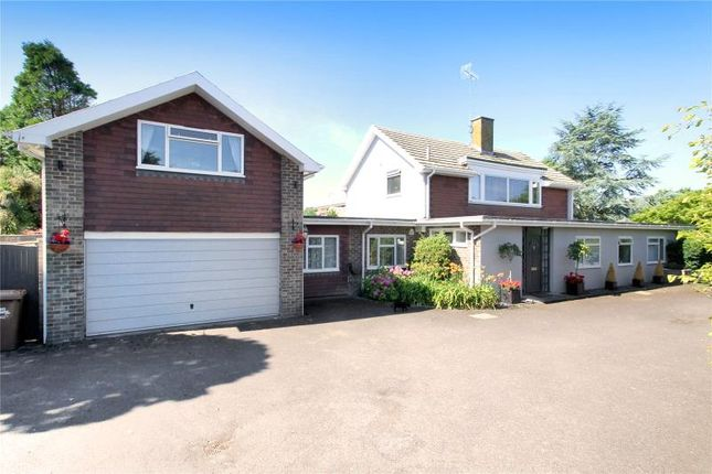 Thumbnail Detached house for sale in Willowhayne Estate, East Preston, West Sussex