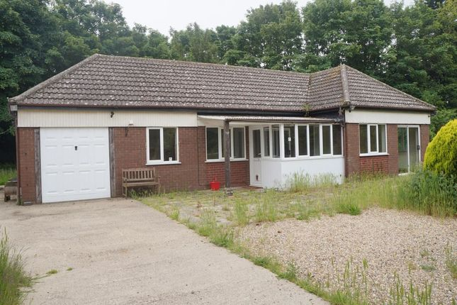 Thumbnail Bungalow to rent in Church Road, Burgh Castle, Great Yarmouth