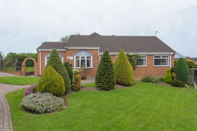 Thumbnail Bungalow for sale in The Paddock, Newton Aycliffe
