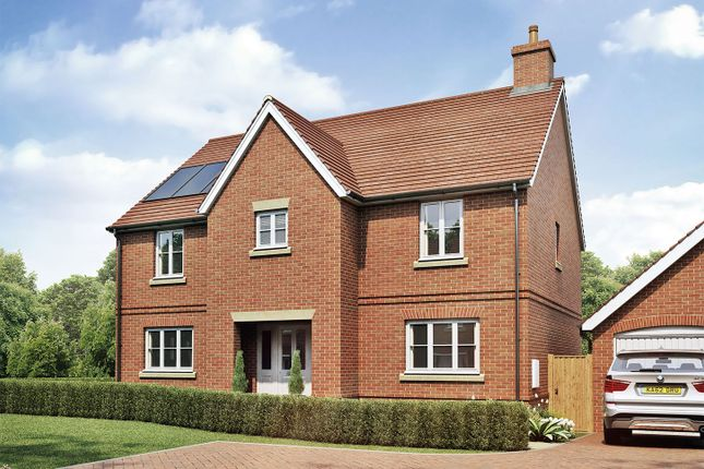 "Thumbnail Detached house for sale in ""The Kitchener"" at Sandy Lane, Waltham Chase, Southampton"