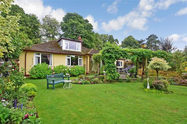 Thumbnail Bungalow for sale in Lower Road, Great Bookham, Surrey