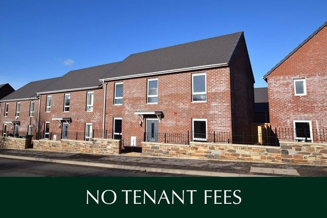 Thumbnail Semi-detached house to rent in Tithebarn Way, Exeter