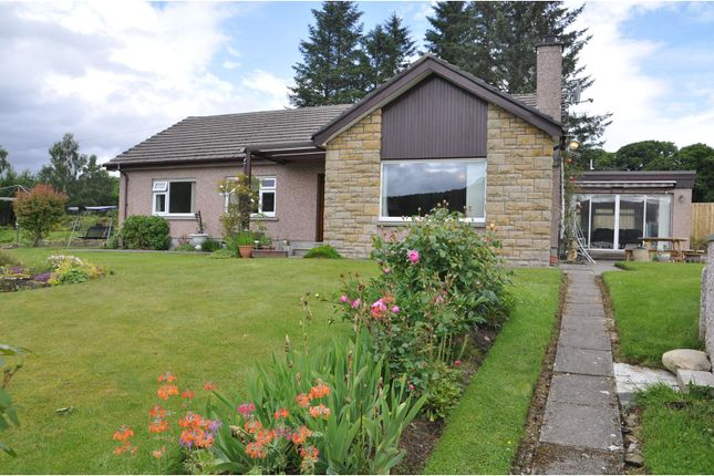Thumbnail Detached bungalow to rent in Contin, Strathpeffer