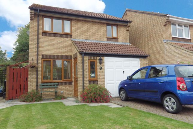 Thumbnail Detached house to rent in Boundary Close, Swindon, Wiltshire