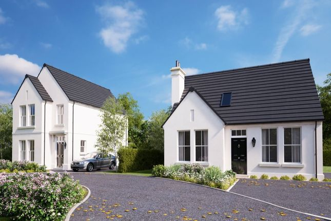Thumbnail Detached house for sale in Belfast Road, Ballygowan, Newtownards
