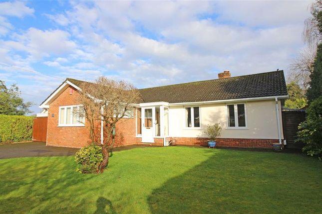 Thumbnail Detached bungalow for sale in Ballard Close, New Milton, Hampshire