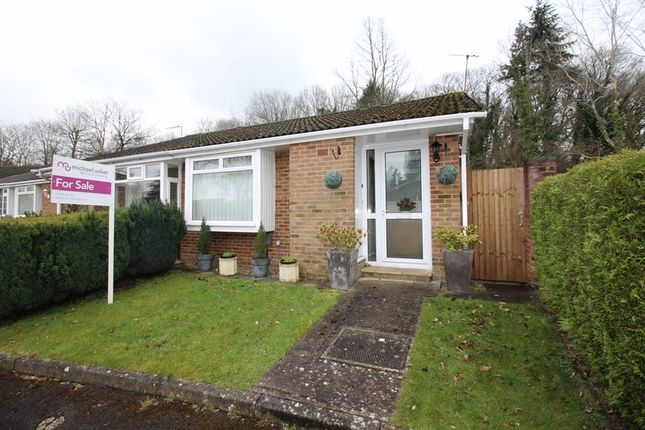 Thumbnail Semi-detached bungalow for sale in Greythorne Road, Woking
