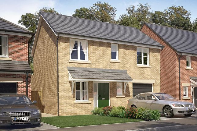 "Thumbnail Detached house for sale in ""The Morton"" at High Gill Road, Nunthorpe, Middlesbrough"