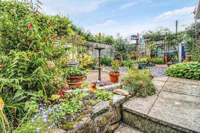 Garden At Back of South Street, Barnstaple EX32