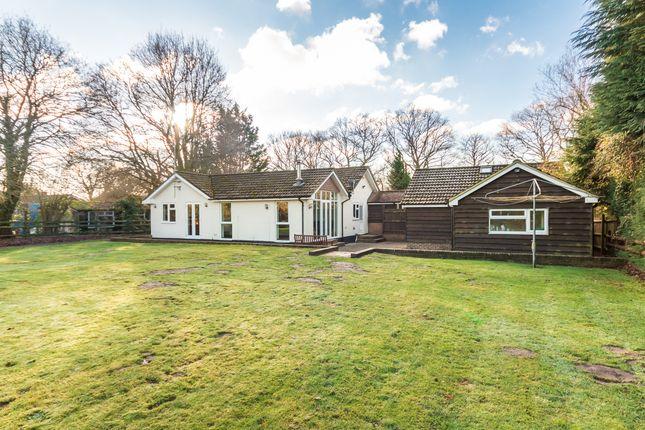 Thumbnail Detached bungalow for sale in Horton Heath, Horton, Wimborne
