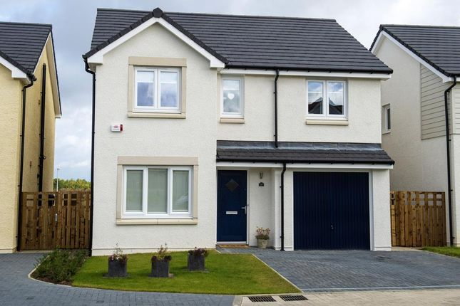 "Thumbnail Detached house for sale in ""The Fairbairn "" at East Calder, Livingston"