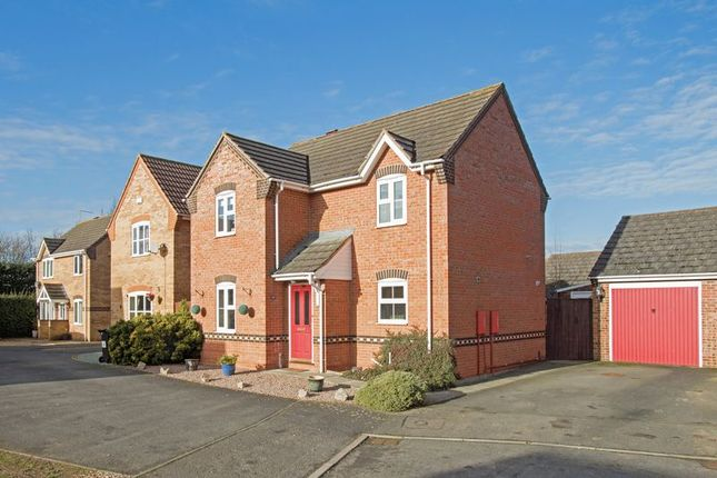 Thumbnail Detached house to rent in Marigold Close, Stamford