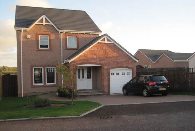 Thumbnail Detached house to rent in Black Devon Place, Inchture, Perthshire