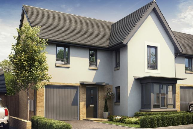"""Thumbnail Detached house for sale in """"Halstead"""" at Redwood Drive, Plympton, Plymouth"""