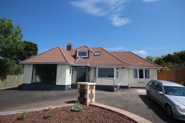 Thumbnail Detached bungalow to rent in Staple Lane, West Quantoxhead