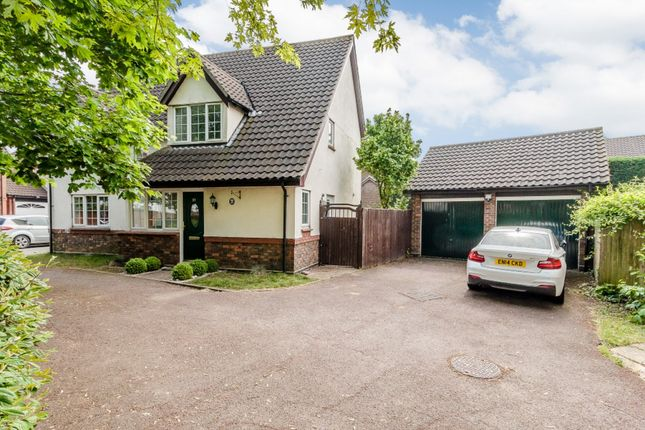Thumbnail Detached house for sale in The Pines, Basildon, Essex