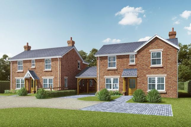 Thumbnail Detached house for sale in High Street, Shirrell Heath, Southampton