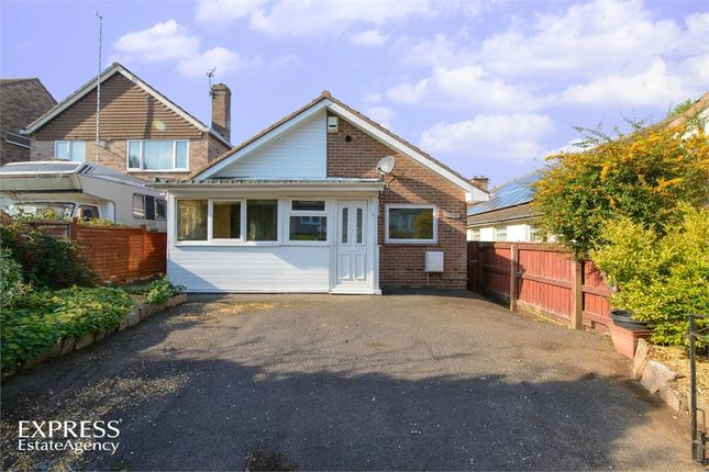Thumbnail Detached bungalow for sale in Charles Crescent, Taunton, Somerset