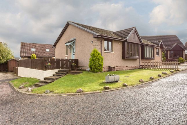 Thumbnail 2 bed semi-detached bungalow for sale in Bractullo Gardens, Letham, Angus