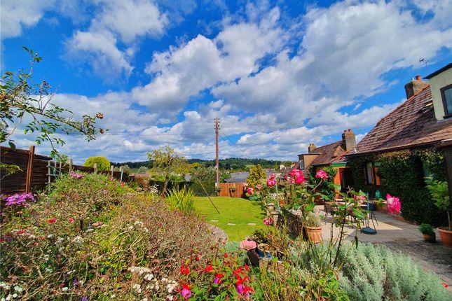 Tiverton Seddons of Brickhouse Hill, Tiverton, Devon EX16