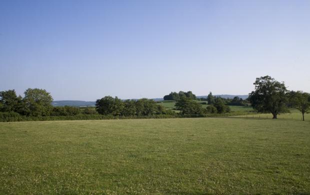 Views of Rumwell Park, Taunton, Somerset TA4