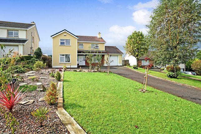 Thumbnail Detached house for sale in Rathview Park, Enniskillen