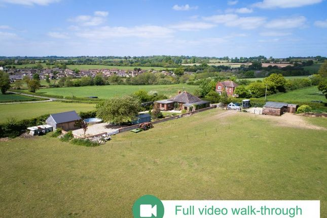 Thumbnail Bungalow for sale in Clifton Maybank, Yeovil