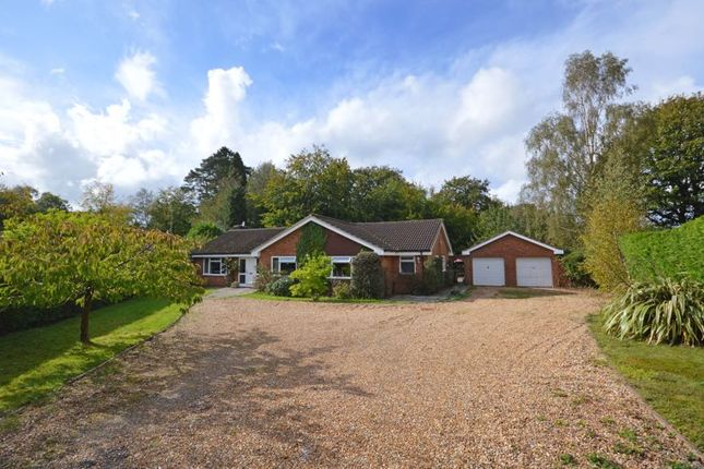 Thumbnail Detached bungalow for sale in Ridgemoor Close, Hindhead
