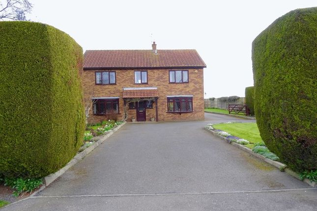 Thumbnail Property for sale in Backgate, Cowbit, Spalding