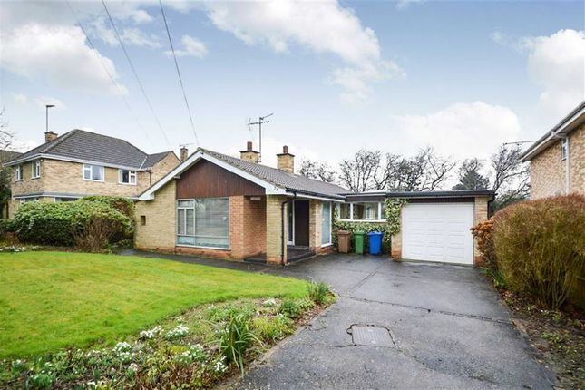 Thumbnail Detached bungalow for sale in Elveley Drive, Westella, East Riding Of Yorkshire