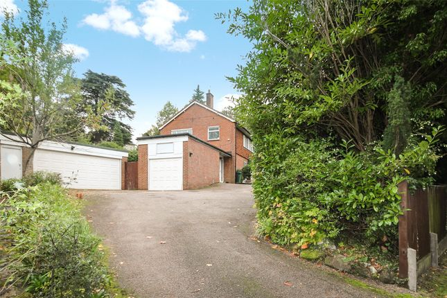 Thumbnail Detached house to rent in Alders Road, Reigate, Surrey