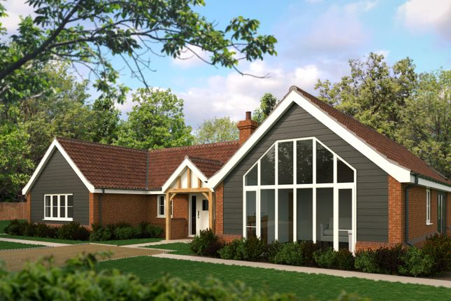 Thumbnail Detached bungalow for sale in Westbourne Road, Coltishall, Norwich, Norfolk